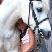 bwf_equine_1